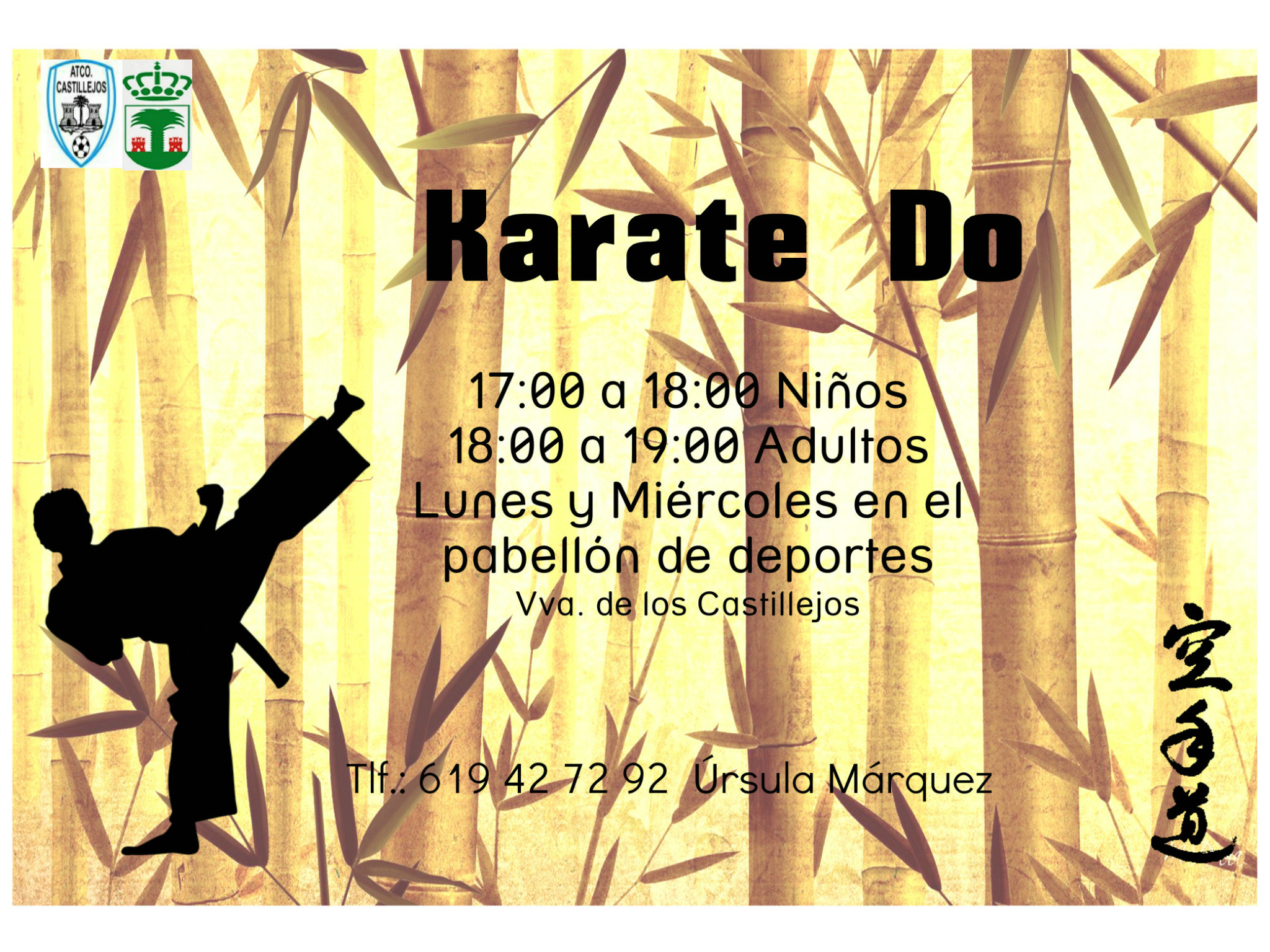 cartel karatedo escudo